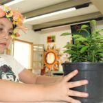 Programação de junho da Biblioteca Lucilia Minssen abordará o meio ambiente