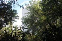 Projeto Iberê nas Praças retoma caminhada ecológica