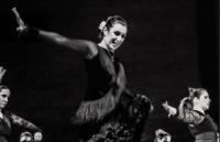 Tablado Andaluz promove curso de dança flamenca para iniciantes e aulas especializadas no mês de fevereiro