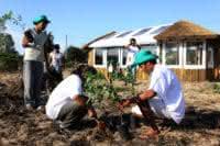 Projeto Ar, Água e Terra realiza plantio em aldeia indígena de Porto Alegre